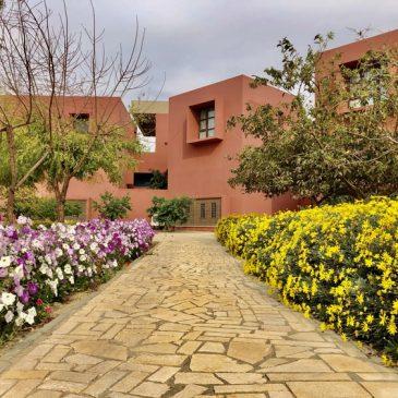 Tips Menata Taman Depan Rumah, Ketahui Trik Mudahnya